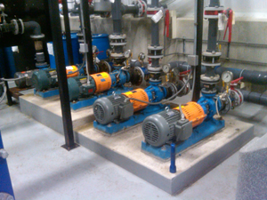 Ansi Pump Installation